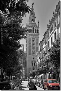 8111s Sevilla
